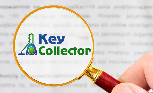 Сбор базовых минус-слов с помощью Key Collector